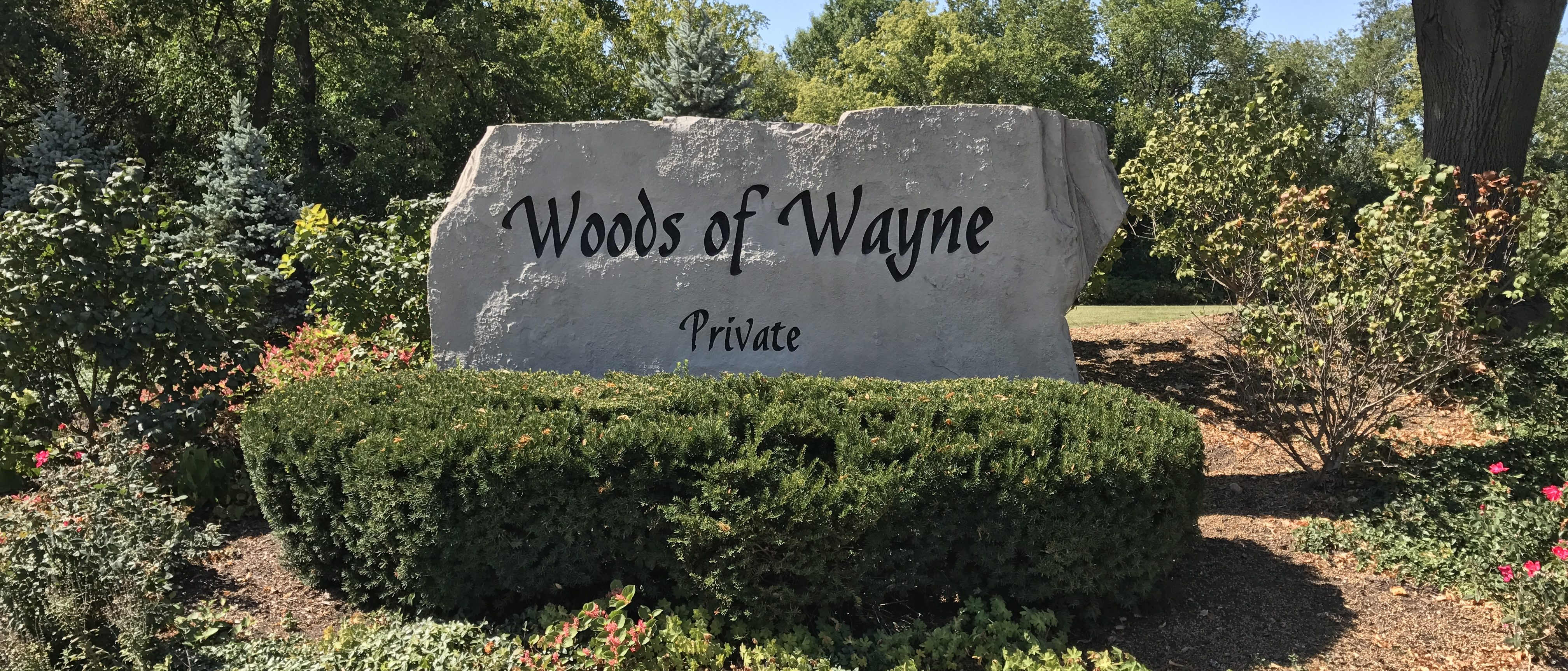 Woods of wayne